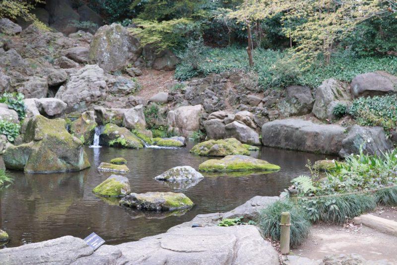 六義園の滝見茶屋は是非見ておきたい絶景ポイント