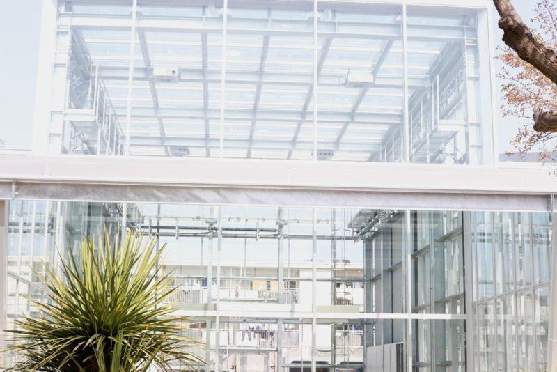 小石川植物園の公開温室の外観