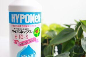 液体肥料の定番ハイポネックス原液