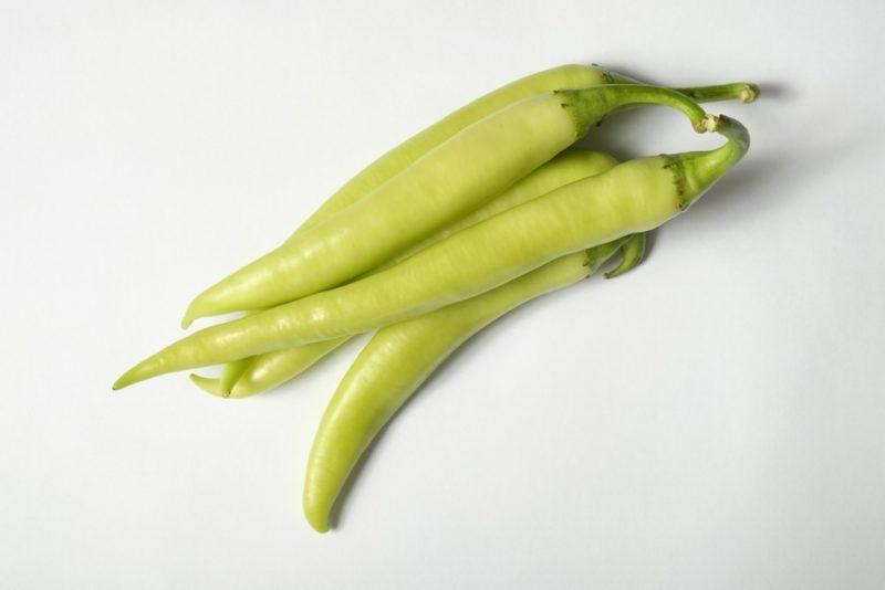 白い品種のシシトウ