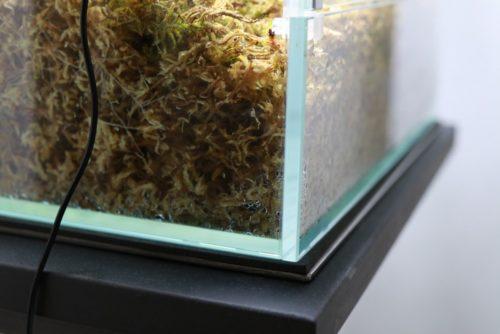 ネオグラスパルダのガラス